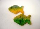 Animals_Fish with Sugar