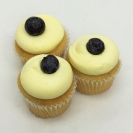 Petit Lemon Blueberry